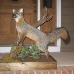 Fox Full Mount with Base